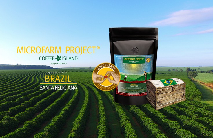 MicroFarm Project®: Brazil Santa Feliciana