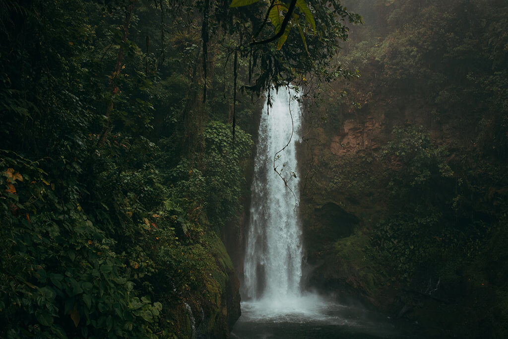 waterfall_coffee_island