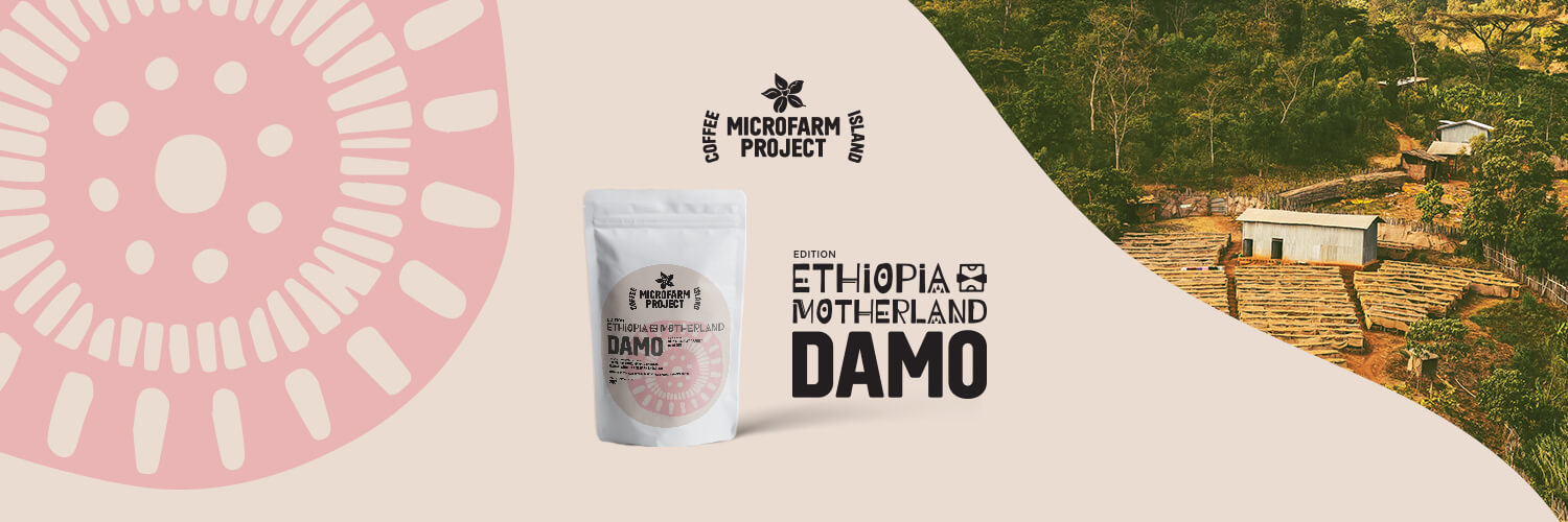 Ethiopia Damo: The First Chapter of Ethiopia Motherland Edition