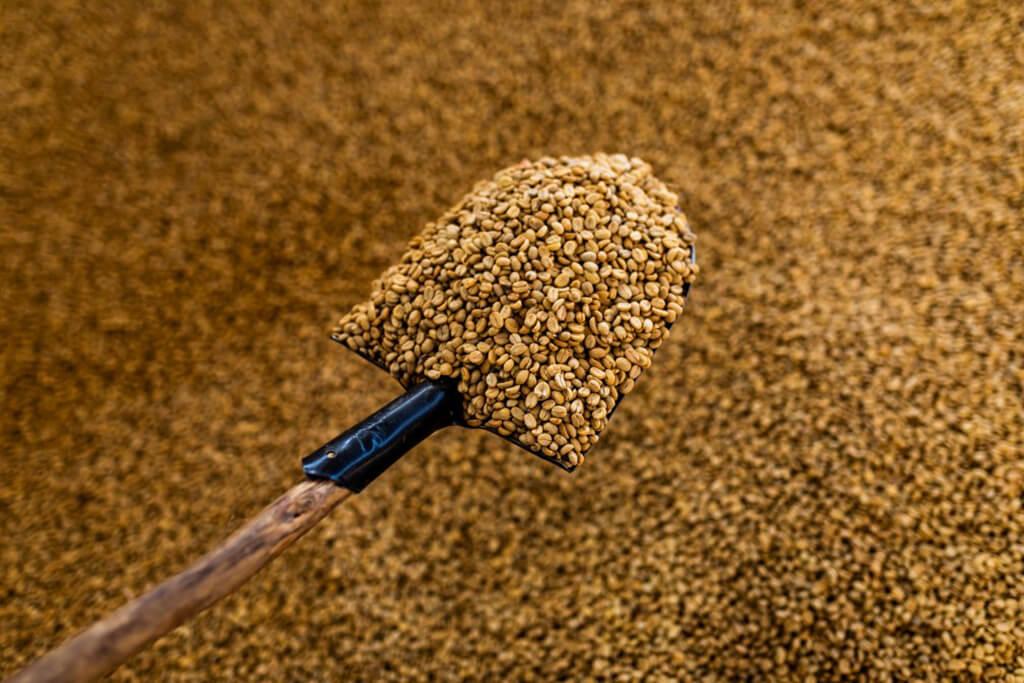 Coffee Island's coffee beans