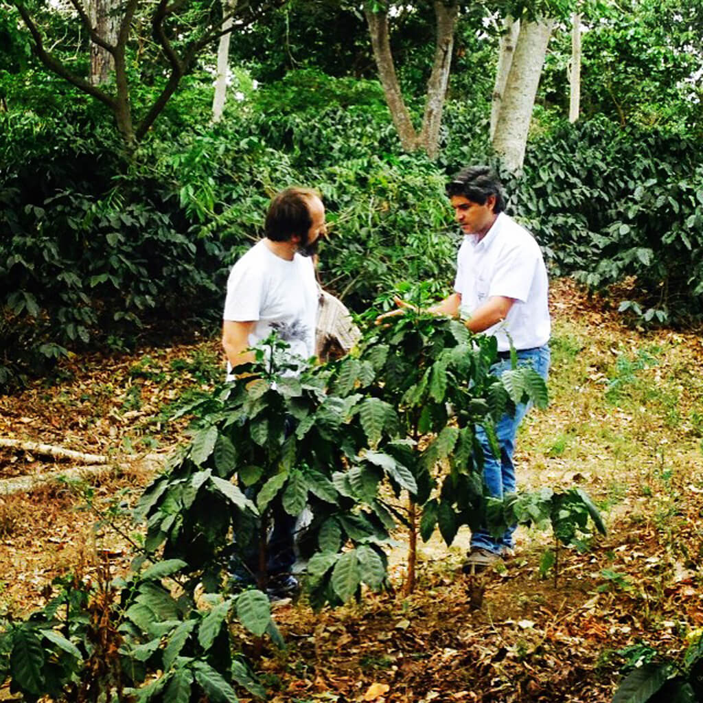 Coffee Island's Coffee Explorer, Panagiotis Konstantinopoulos, in the San Jose farm with the coffee producer Federico Pacas, during our first trip to El Salvador, in 2015.