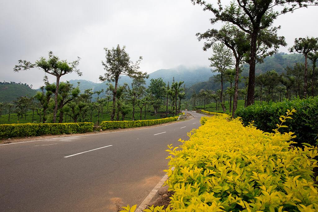 INDIA VALPARAI ROAD